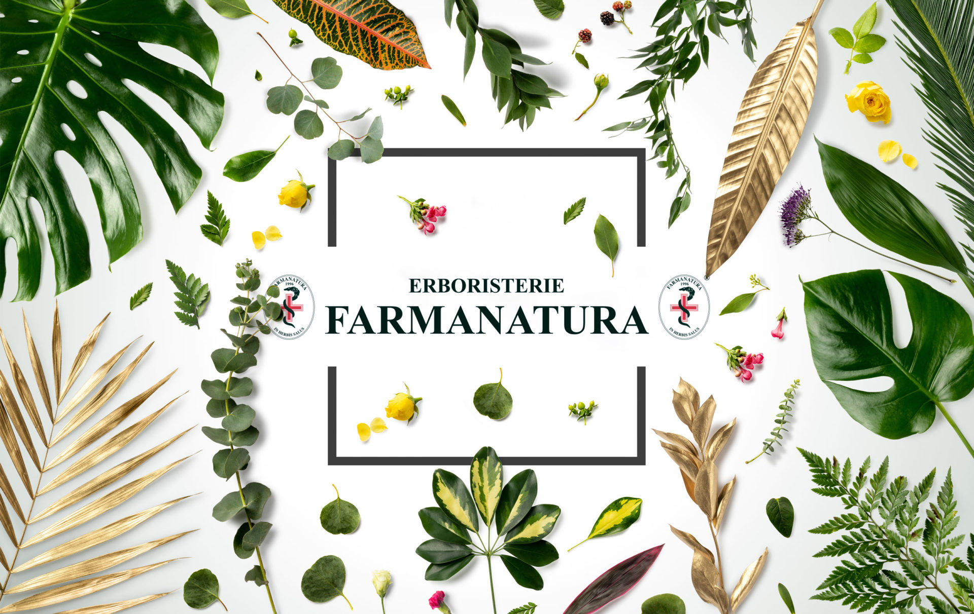 Erboristerie FARMANATURA